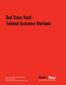 Dual Status Youth TA Workbook